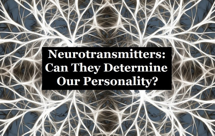 Neurotransmitters: Can They Determine Our Personality?