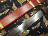Roman Pompeii Gladius Short Sword with Carbon Steel Blade