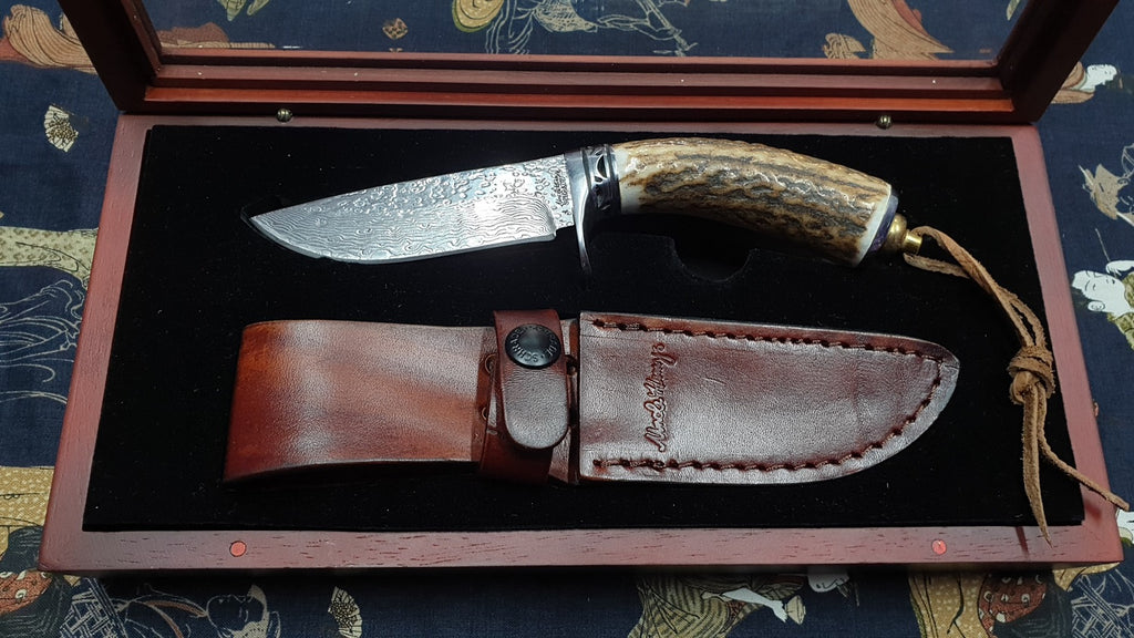 Schrade Damascus Folded Steel Stag Horn Grip Hunting Knife with Case