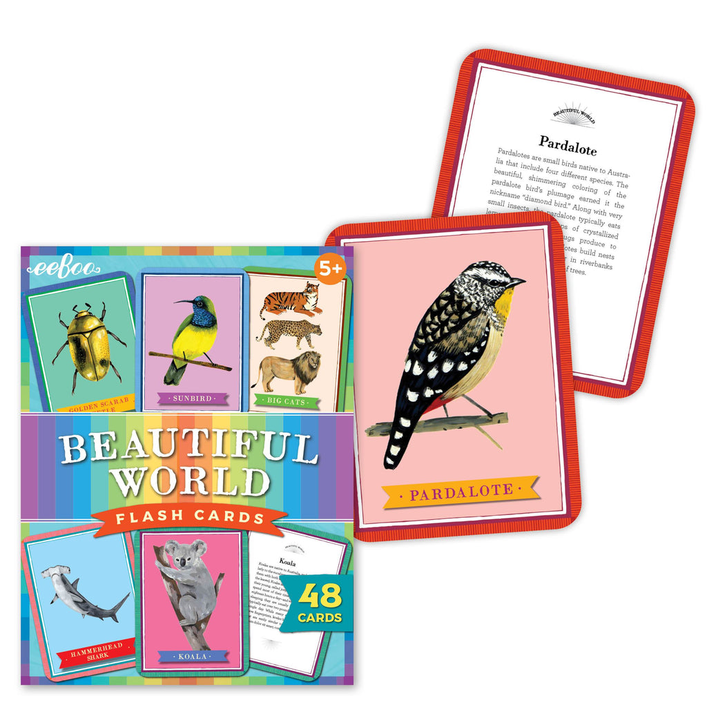 Beautiful World Flashcards, by eeBoo