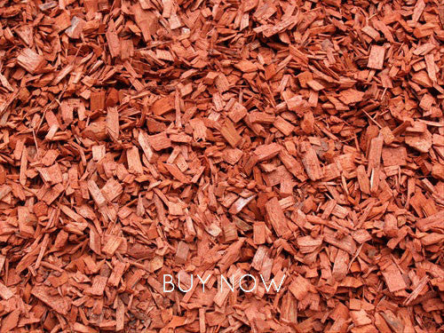 Terracotta Chip - Quantity options