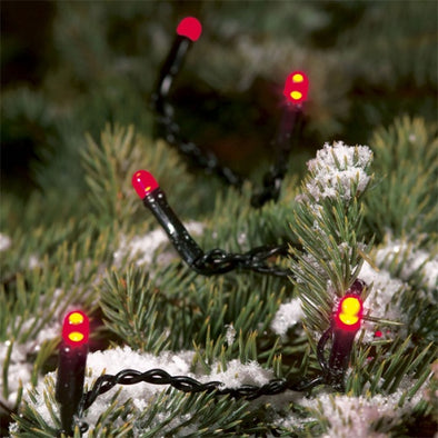 Konstsmide 3631-550 120 Micro LED Christmas Tree Lights  Red