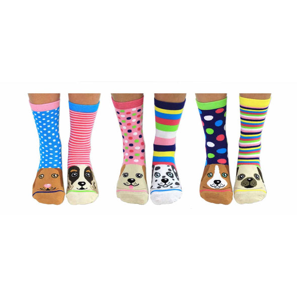 United Odd Socks PAWS lifestyle picture 2