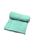 Mini Swaddle Bamboo - sage green