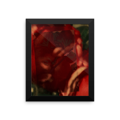 8 inches by 10 inches sized Amaryllis Sheets Black Framed Poster. Price $32.00
