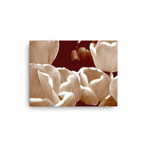 Brushed Tulips Canvases
