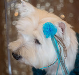 Cute Dog With Bardel Puff Grooming Bow