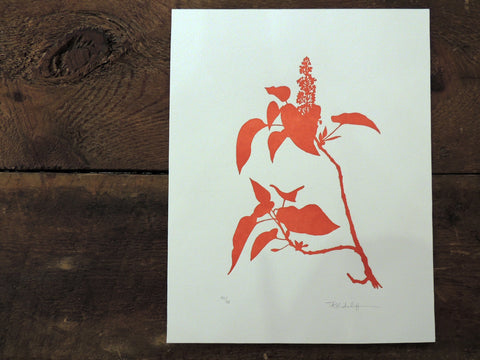Tammy Ratcliff Letterpress Print - Graven Feather