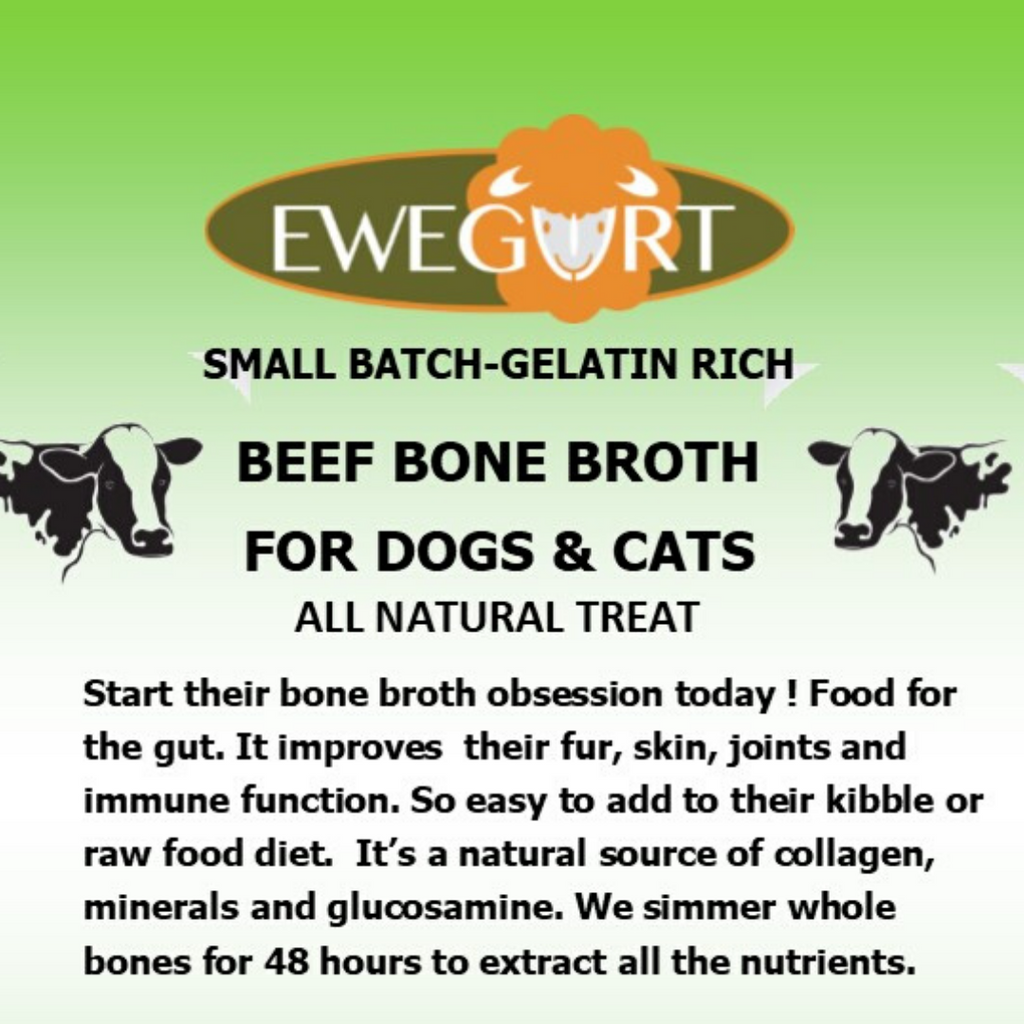 GRASS FED BEEF broth is ideal for picky eaters, compromised gut health & immune health issues