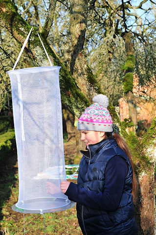 Invicta Insect Observation Net