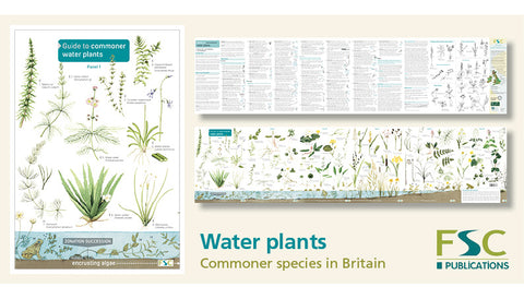 Water Plants Identification Chart