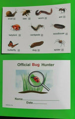 Bug & Insects Hunting Cards 1- 10 with certificate on reverse. Wipe clean Gloss