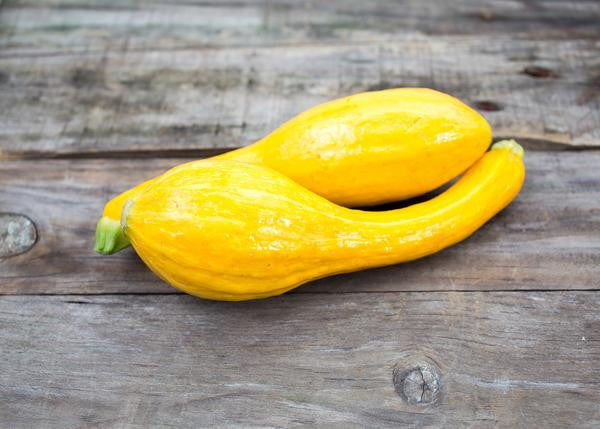 Summer Squash: What's in my Farm Box?!