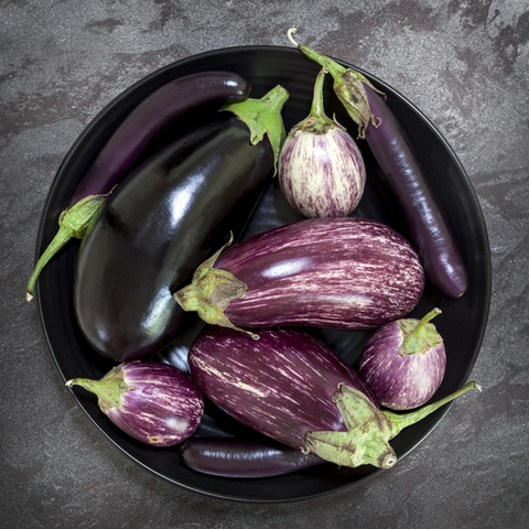 Eggplant 101: How to Properly Pick and Prep Your Plant