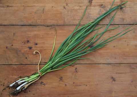 Whole Spring Garlic