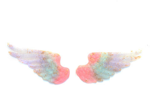 Pastel Ombre Wing Rings