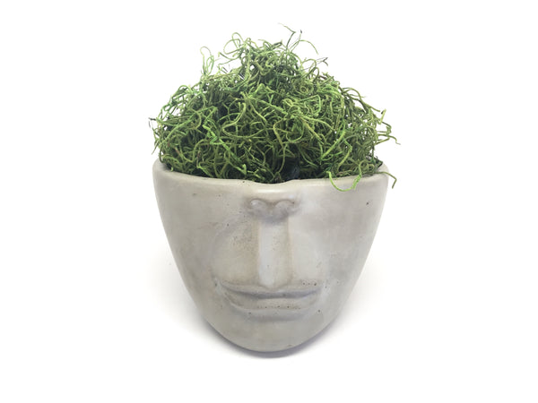 Half Dome Piece - Concrete Face Planter