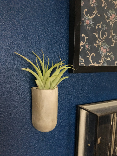 Concrete Wall Planter - Wall Storage - Air Plant Holder - Wall Decor
