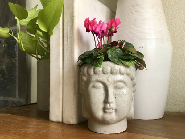 Large Concrete Buddha Head Planter - Home Decor - Office Storage - Zen Decor