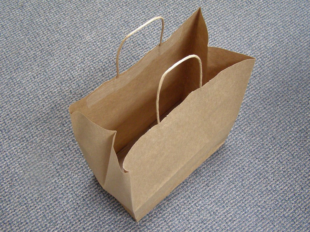 brown paper shopping bag with rope handle