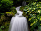 cascading garden waterfall with green leafs as background