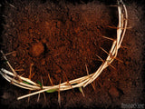 crown of thorns on dirt background