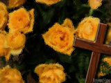 easter cross on a rose background