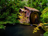 garden pond water wheel with fall colors background