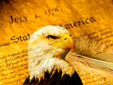declaration of independence background with impression of eagle