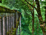 old stone bridge leads the way through the forest