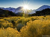 sunburst over mountain top summer background
