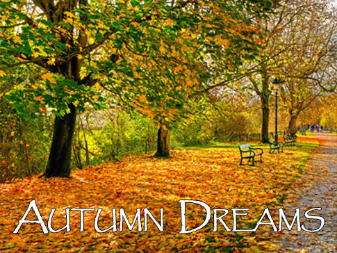 Autumn Dreams Backgrounds Collection