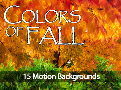 Colors of Fall Motion Backgrounds Collection