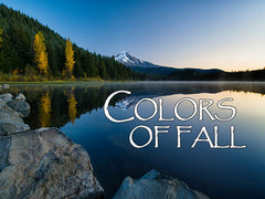 Colors of Fall Backgrounds Collection