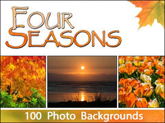 Four Seasons Backgrounds Bundle