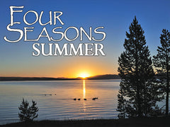 Four Seasons Summer Backgrounds Collection