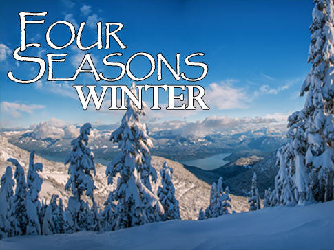 Four Seasons Winter Backgrounds Collection