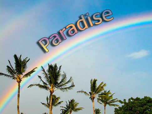 paradise backgrounds collection