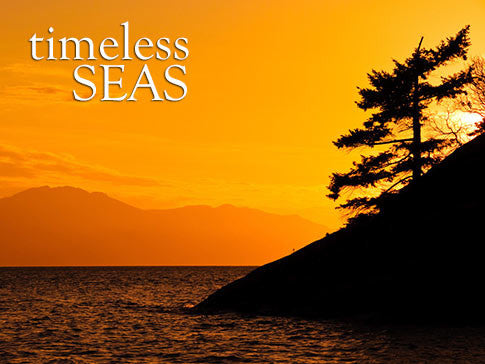 timeless seas ocean backgrounds collection