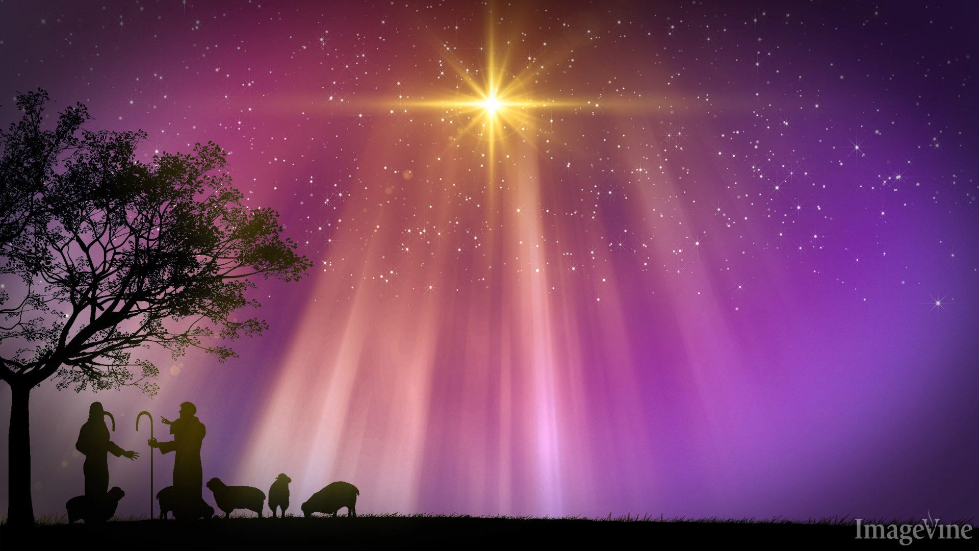 christian christmas backgrounds, images and mini movies – imagevine, Modern powerpoint