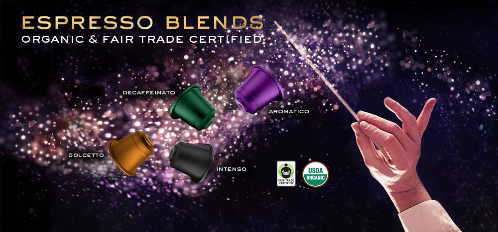 Barrie House Organic Fair Trade Espresso Blend Capsules