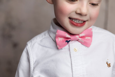 Boy's Pink Horses Bow Tie
