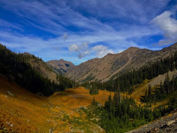 5 Amazing Fall Hikes in Olympic National Park - Ogden Made