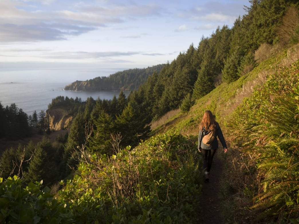 5 Hikes With Beautiful Views on the Oregon Coast - Ogden Made