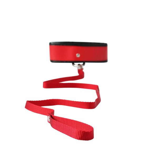 Red Leash & Collar