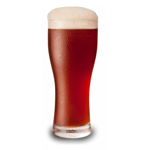 BEER KITS - Festa Brew Red Ale