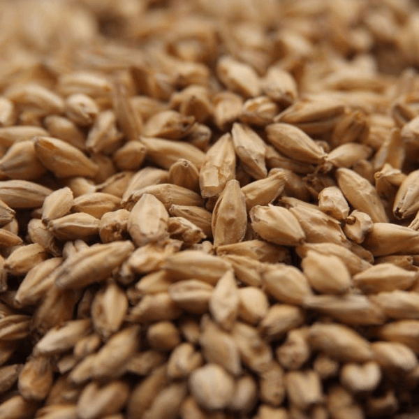 GRAINS - 2 Row Malt - 55lb