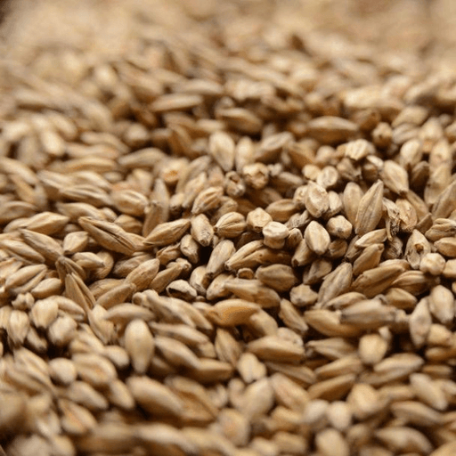 GRAINS - Honey Malt - 5lb