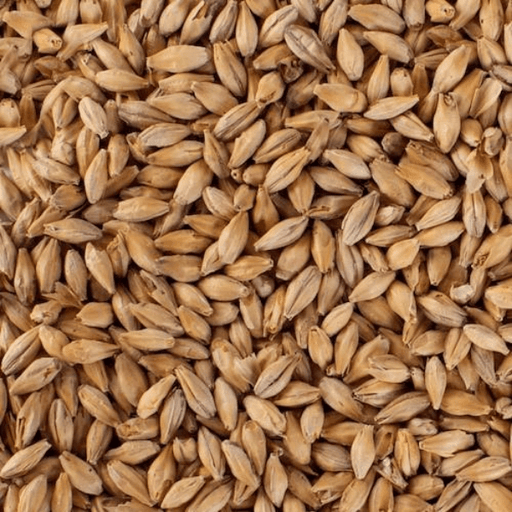 GRAINS - Light Munich Malt - 1lb