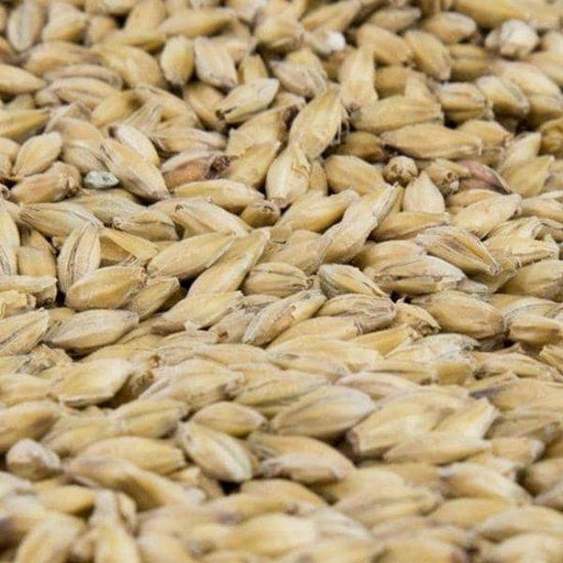 GRAINS - Vienna Malt Grain - 5lb